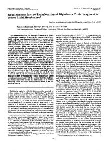 Requirements for the Translocation of Diphtheria Toxin Fragment A ...