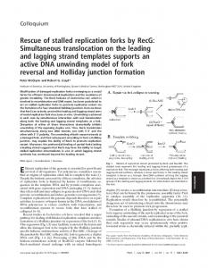 Rescue of stalled replication forks by RecG: Simultaneous ...