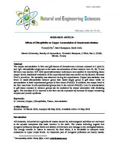 RESEARCH ARTICLE- Effects of Clinoptilolite on Copper ... - DergiPark