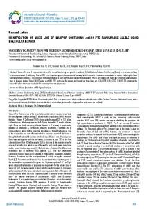 Research Article IDENTIFICATION OF MAIZE ... - BioInfo Publication