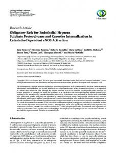Research Article Obligatory Role for Endothelial