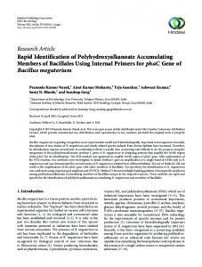 Research Article Rapid Identification of