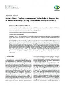 Research Article Surface Water Quality Assessment of ...