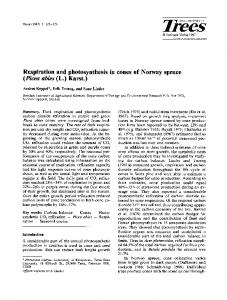 Respiration and photosynthesis in cones of Norway ... - Springer Link