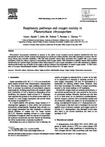 Respiratory pathways and oxygen toxicity in