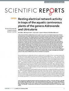 Resting electrical network activity in traps of the aquatic carnivorous