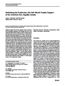 Rethinking the Freshwater Eel: Salt Marsh Trophic Support of the ...