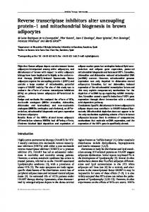 Reverse transcriptase inhibitors alter uncoupling protein-1 and