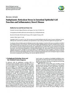 Review Article Endoplasmic Reticulum Stress in ...