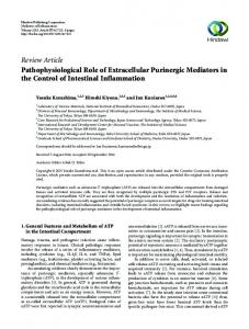 Review Article Pathophysiological Role of Extracellular Purinergic ...