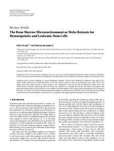 Review Article The Bone Marrow Microenvironment