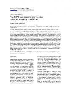 Review Article The COP9 signalosome and vascular function ...