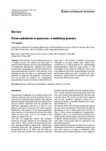 Review From endoderm to pancreas: a multistep journey - Springer Link