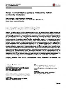 Review on Zinc Oxide Nanoparticles: Antibacterial Activity and Toxicity