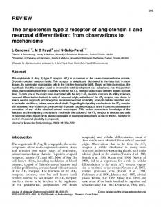 REVIEW The angiotensin type 2 receptor of angiotensin II and ...