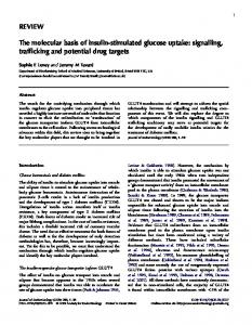 REVIEW The molecular basis of insulin-stimulated glucose uptake ...