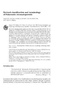 Revised classification and terminology of Palaeozoic s ... - CiteSeerX