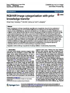 RGB-NIR image categorization with prior knowledge transfer