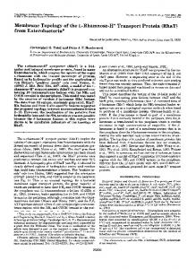 RhaT - The Journal of Biological Chemistry