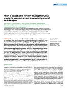 RhoA is dispensable for skin development, but crucial for contraction ...
