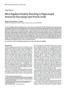 RhoA Regulates Dendrite Branching in ... - Semantic Scholar