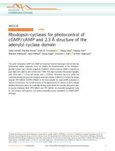 Rhodopsin-cyclases for photocontrol of cGMP/cAMP and 2.3 ... - Nature