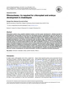 Ribonuclease J is required for chloroplast and embryo development in ...
