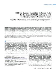 RIC8 Is a Guanine-Nucleotide Exchange Factor for Ga ... - Genetics