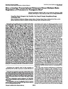 Rice - The Journal of Biological Chemistry