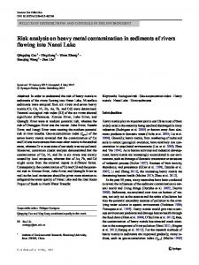 Risk analysis on heavy metal contamination in sediments of rivers