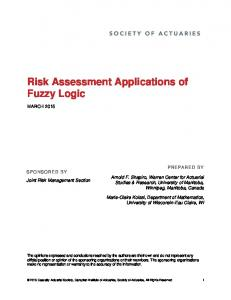 Risk Assessment Applications of Fuzzy Logic
