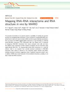RNA interactome and RNA structure in vivo by MARIO