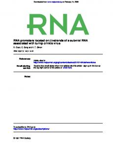 RNA promoters located on (-)-strands of a subviral RNA - NCBI