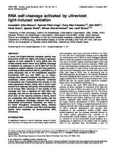 RNA self-cleavage activated by ultraviolet light-induced oxidation