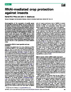 RNAi-mediated crop protection against insects - CiteSeerX