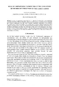 Role of amphiphilic compounds in the evolution of ... - Springer Link