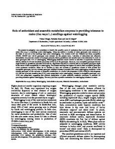 Role of antioxidant and anaerobic metabolism ... - Semantic Scholar
