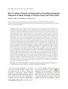 Role of Calcium Carbonate and Palygorskite in