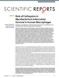 Role of Cathepsins in Mycobacterium tuberculosis Survival in Human ...