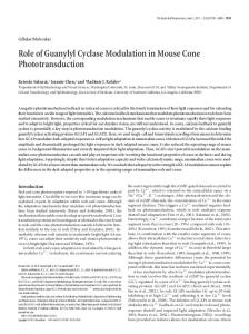 Role of Guanylyl Cyclase Modulation in Mouse