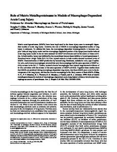 Role of Matrix Metalloproteinases in Models of ... - ATS Journals
