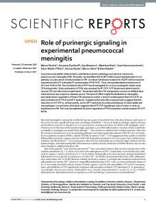 Role of purinergic signaling in experimental ...
