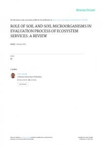 role of soil and soil microorganisms in evaluation ...