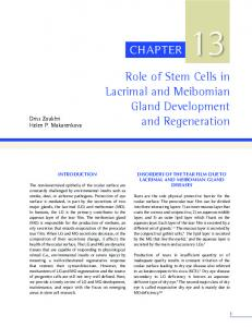 Role of Stem Cells in Lacrimal and Meibomian Gland ...