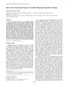 Role of the Vomeronasal Organ in Neonatal Offspring Recognition in ...