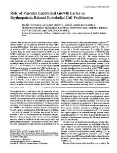 Role of Vascular Endothelial Growth Factor on Erythropoietin-Related ...