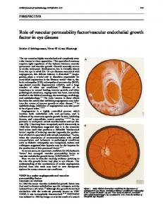 Role of vascular permeability factor/vascular endothelial growth factor ...