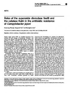 Roles of the superoxide dismutase SodB and the catalase KatA in the ...