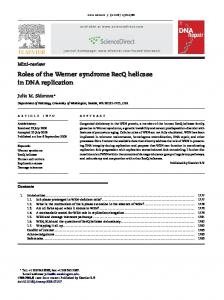 Roles of the Werner syndrome RecQ helicase in DNA replication