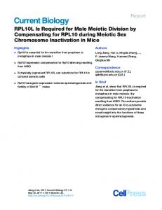 RPL10L Is Required for Male Meiotic Division by ...